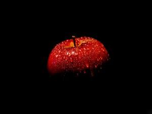 Postal: Una manzana roja en la oscuridad