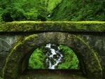 Puente de piedra cubierto de musgo