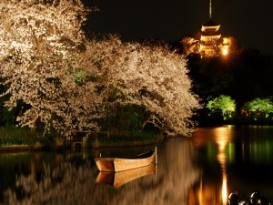 Postal: Un bote en el lago en una noche primaveral