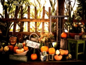 El jardín de las calabazas para Halloween