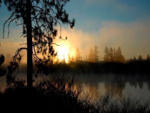 Sol y niebla al amanecer
