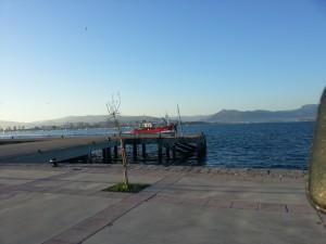 Postal: Barco pesquero en el mar