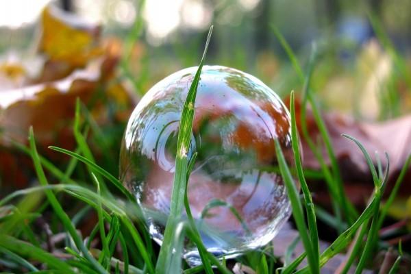 Pompa de jabón sobre la hierba