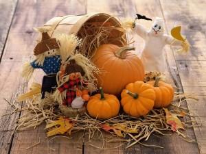 Postal: Bonita decoración con calabazas para Halloween
