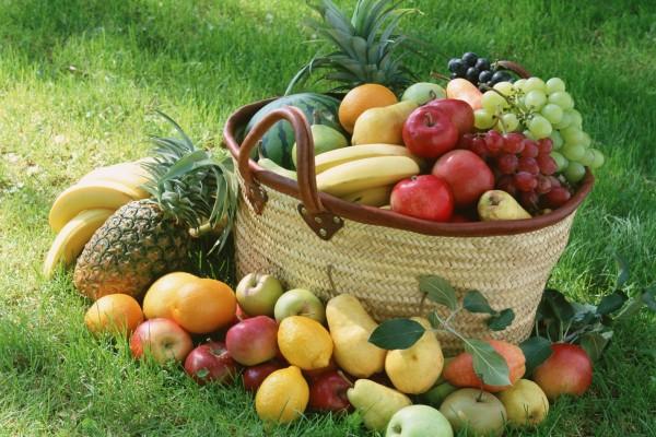 Abundantes frutas variadas sobre el césped