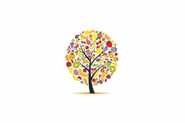 El árbol de la fruta