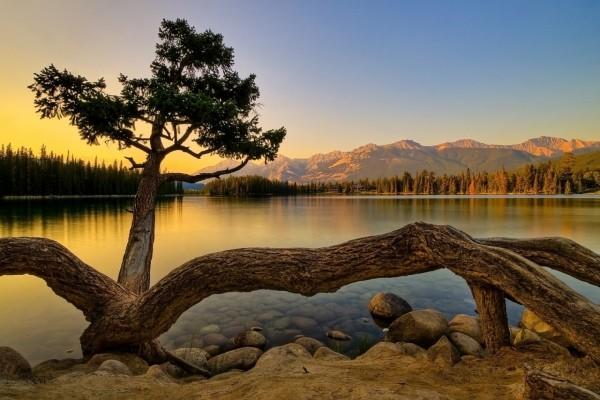 Un tranquilo amanecer en el lago