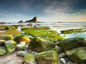 Admirando las rocas durante la marea baja