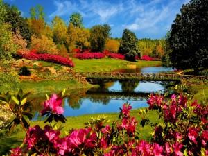 Postal: Puente sobre un río en un bello jardín