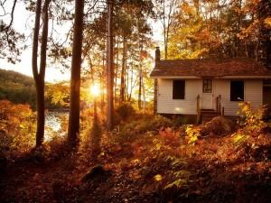 Hermosa casita en el bosque junto a un río