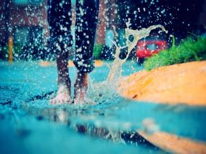 Postal: Descalzo en el agua