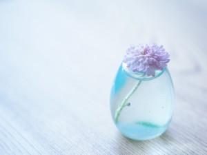 Postal: Flor en un jarrón con agua