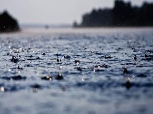 La lluvia cae sobre un charco de agua