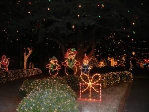 Luces navideñas en un jardín