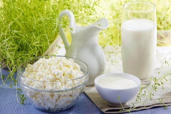 Leche, yogur y queso