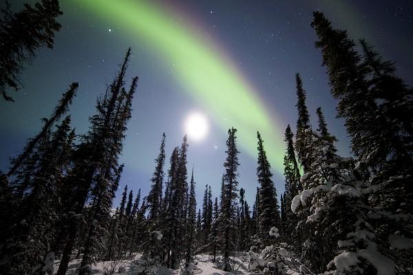 Aurora boreal en el cielo estrellado