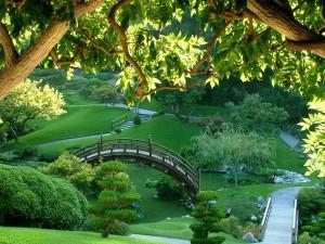 Bonito parque japonés