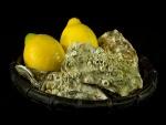 Ostras y limones en una cesta