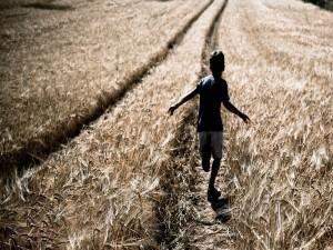 Un niño corriendo en un trigal
