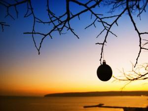 Solitaria bola de Navidad colgando de la rama de un árbol