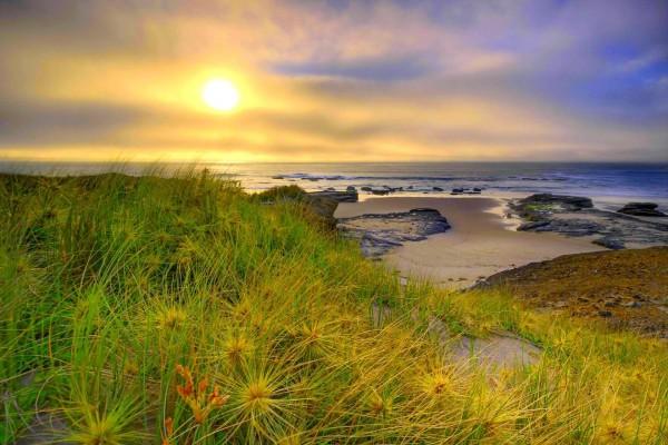 Mañana tranquila en la orilla del mar