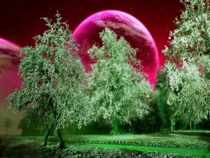 Árboles frente a un nuevo planeta
