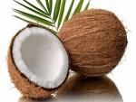 Un rico coco