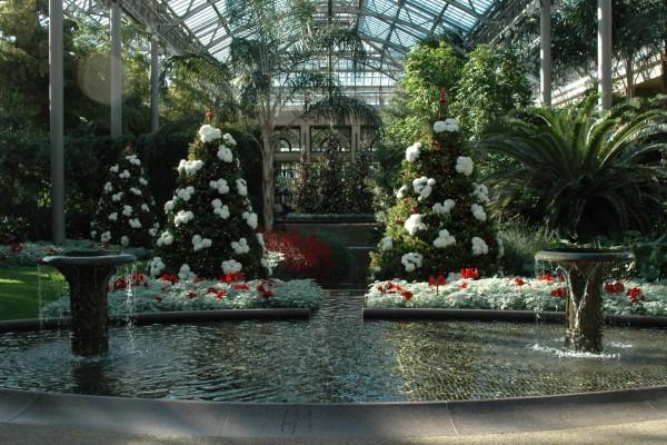 Árboles de Navidad adornados con flores