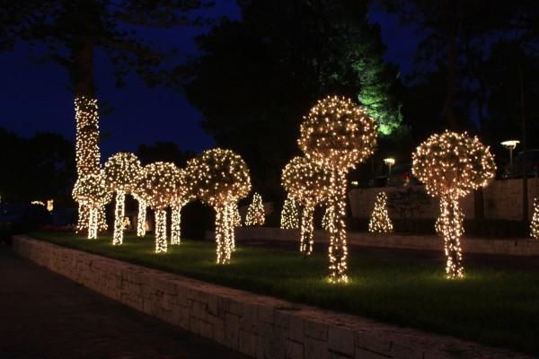Árboles en un jardín iluminados por Navidad
