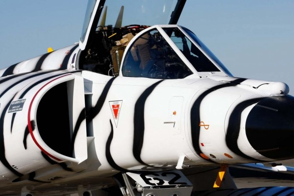 Un avión de combate pintado de blanco con líneas negras como una cebra