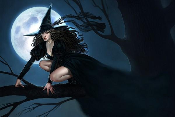 Una bruja sobre un árbol en Halloween