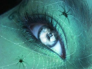 Arañas cerca de un ojo de mujer