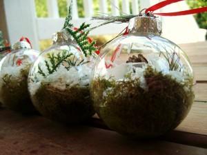 Elementos de la naturaleza dentro de bolas de Navidad