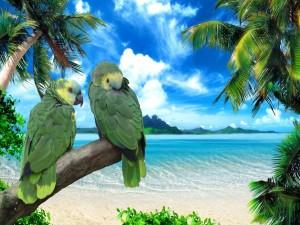Postal: Dos bellos loros con plumas verdes