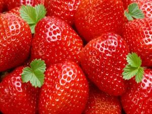 Postal: Hojitas verdes sobre unas fresas