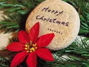 Feliz Navidad escrito en una piedra
