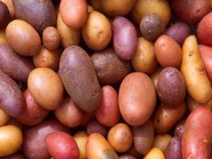 Patatas de varios colores
