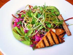 Postal: Ensalada vegetariana con germinados y tofu
