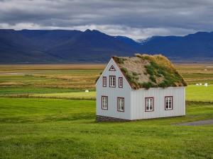 Postal: Solitaria casa con tejado de hierba en Islandia