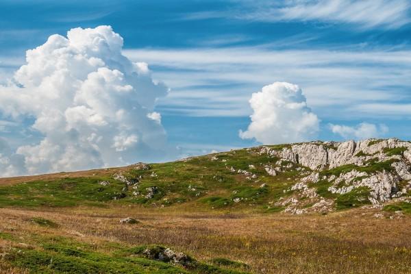 Pastos en las montañas de Crimea