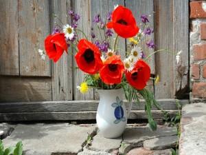 Postal: Amapolas y otras flores silvestres en un florero