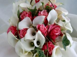 Postal: Ramo de novia con calas blancas y rosas de color rosa