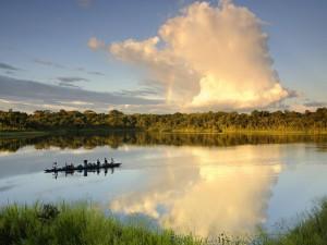 Postal: Arco iris en el Parque Nacional Yasuní en Ecuador