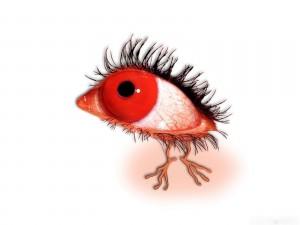 Un ojo rojo