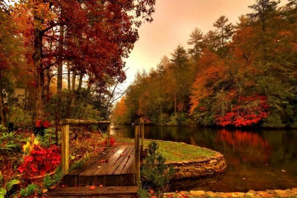 Puente de madera junto al río