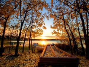 Sol de otoño sobre la orilla del río