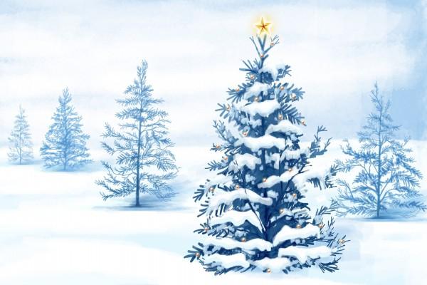 Estrella sobre un árbol de Navidad