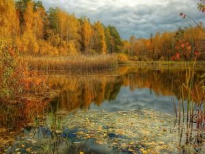 Reflejos de otoño en el lago