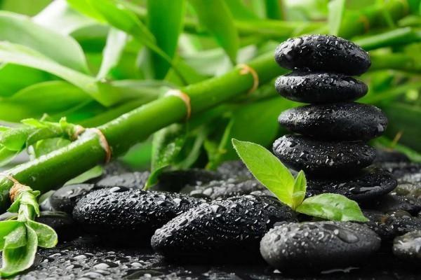 Piedras negras y ramas de bambú