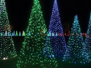 Árboles de luz para Navidad